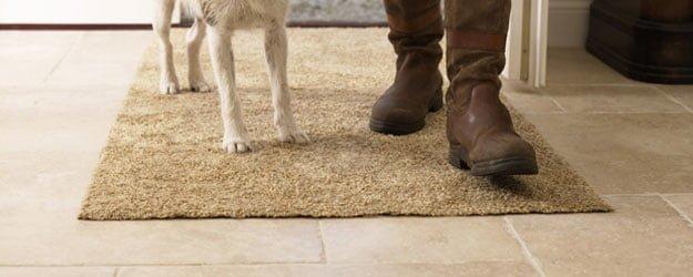 KleanSTONE, The Pet Safe Floor Cleaner - Pet Safe Floor Cleaning - KleanSTONE Floor Cleaners